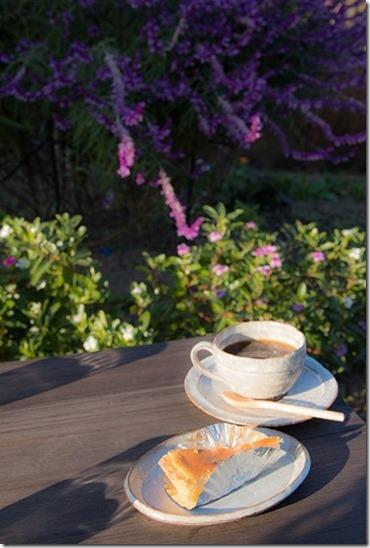 秋月のカフェ Soo-Saiのチーズタルトとコーヒー