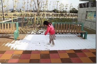 東九州道 上毛PAの雪