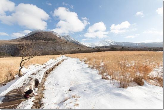 タデ湿原の雪景色