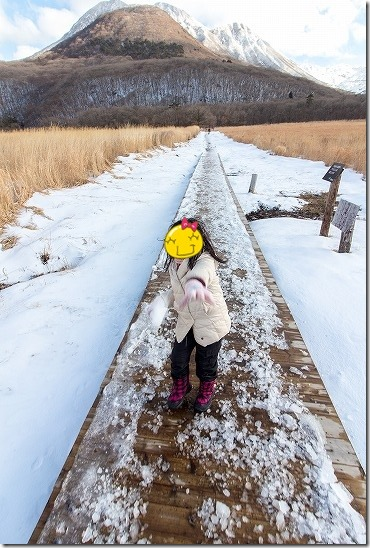 タデ湿原で雪合戦