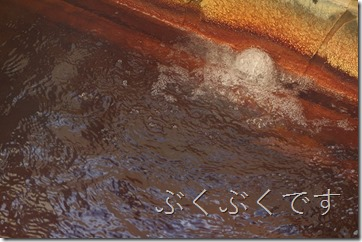 山里の湯の炭酸の泡