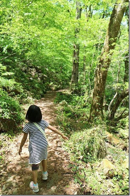 三段峡の新緑の中を散策