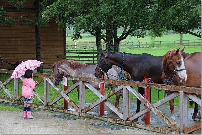 やまなみ牧場の馬と子供
