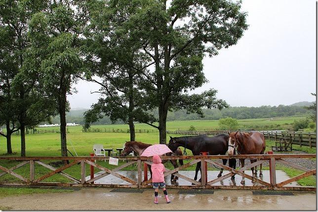 やまなみ牧場の馬