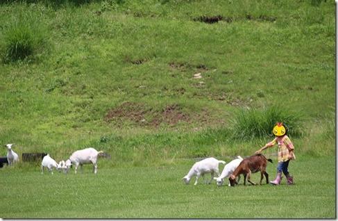 月廻り公園のヤギと子供