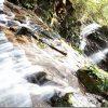 油山市民の森 水の森で水遊び(福岡市)