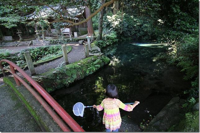 阿蘇 塩井社水源の湧水