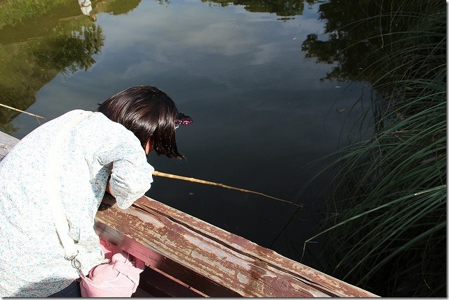 バイオパークでザリガニ釣り