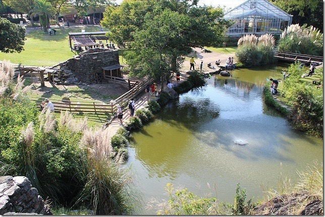 バイオパークでザリガニ釣りの池