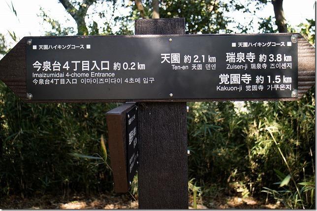 秋の鎌倉散策 天園ハイキングコース