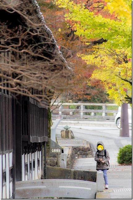 津和野 殿町の秋