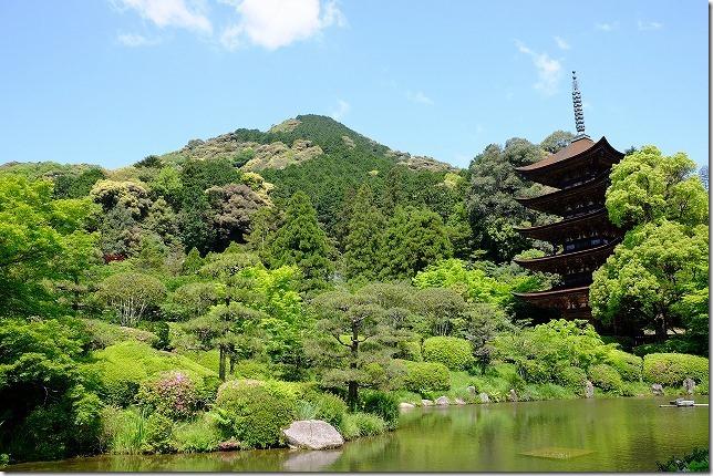 山口、新緑の瑠璃光寺の五重塔