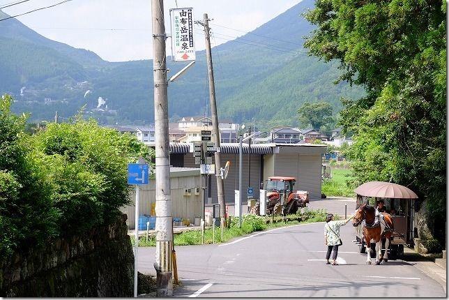 宇奈岐日女神社(うなぎひめ神社)へ馬車で