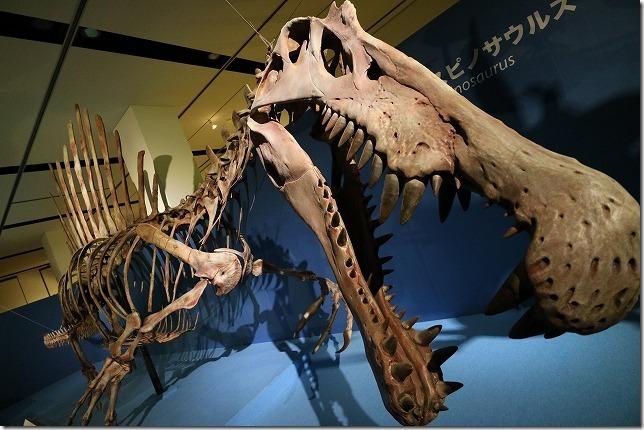 いのちのたび博物館、恐竜博スピノサウルス