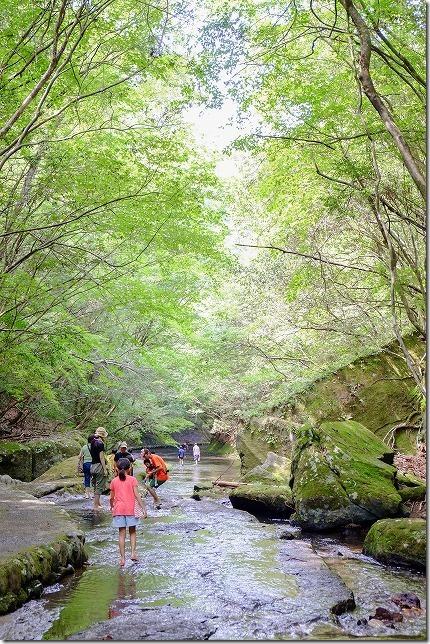 岳切渓谷で水遊びと川歩き