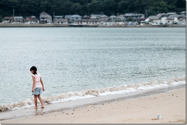 糸島の浜で貝殻