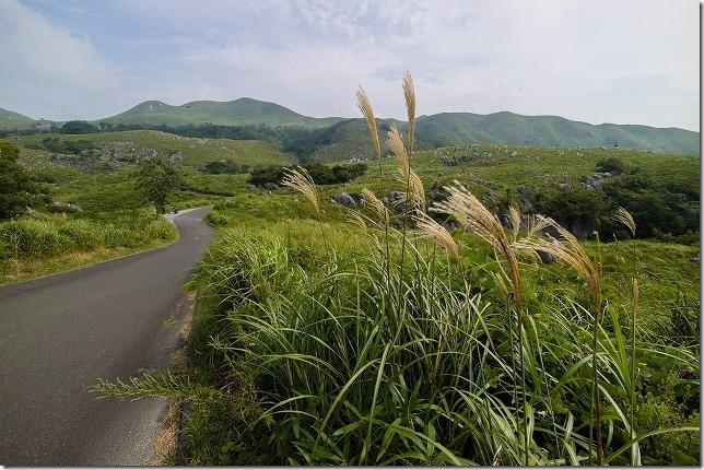 平尾台 水の中に入って進む千仏鍾乳洞(福岡県北九州市)