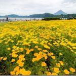 池田湖の遊具と唐船峡のそうめん流し(鹿児島指宿市)