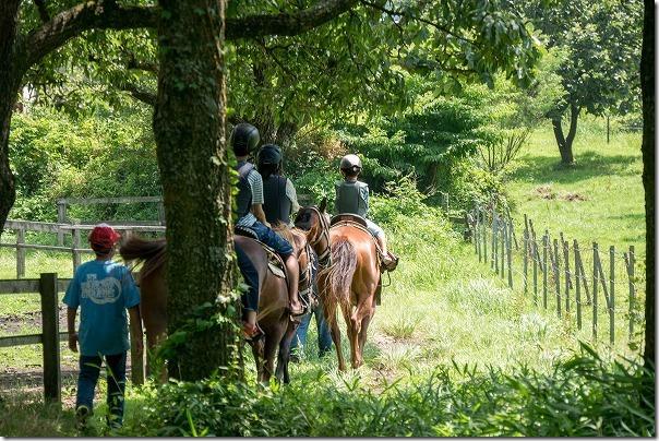 九重エルランチョグランデで子供の乗馬15分コース