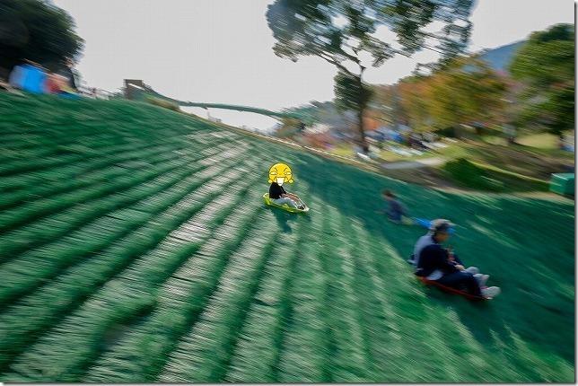 山鹿「あんずの丘」草スキー場と子供