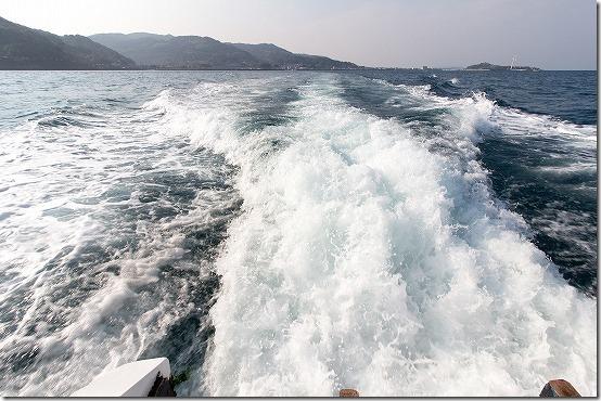 天草 イルカウオッチングで海上へ