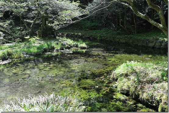 山吹水源の湧水池