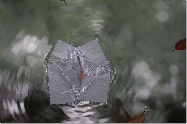 八重垣神社の鏡の池で沈んだ