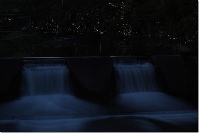 棚田親水公園のホタル
