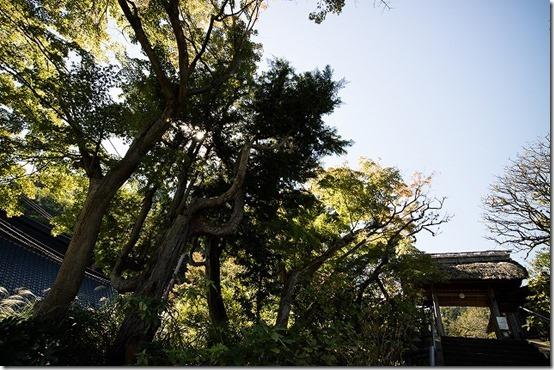 北鎌倉 東慶寺の入り口