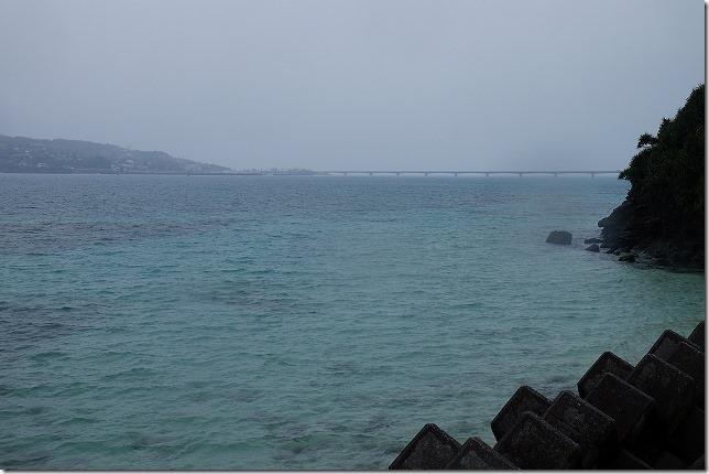 沖縄旅行(3日目) 雨のパイナップルパーク