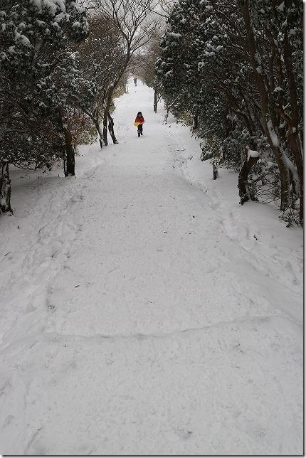 雪のくじゅう・阿蘇 牧の戸でソリ・瀬の本 八菜家でランチ