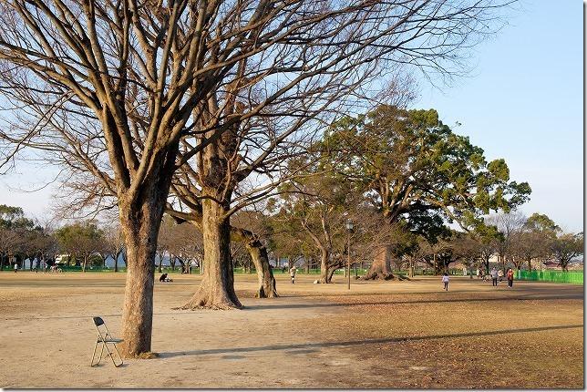 熊本城二の丸広場で