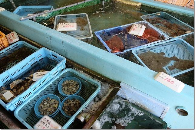 三角港の直売所(魚貝)