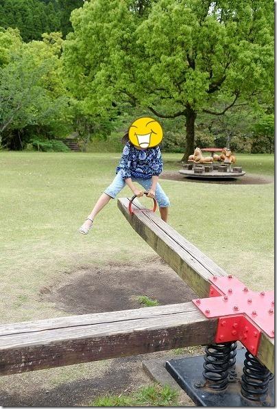 岩屋公園の遊具