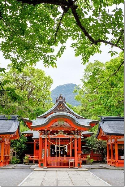 枚聞神社の本殿越しに開聞岳