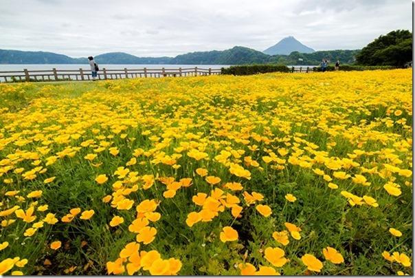 池田湖から開聞岳