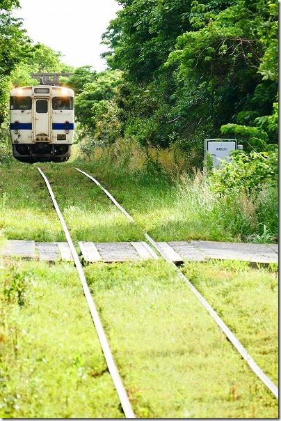 水成川駅に入る列車