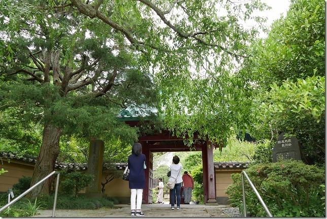長谷寺のおとなりにある、光則寺