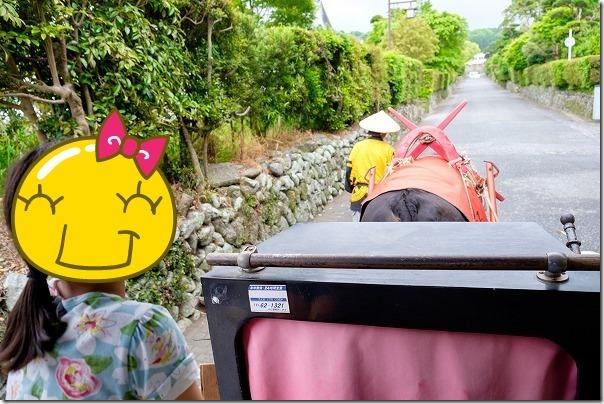 出水、観光牛車に乗る