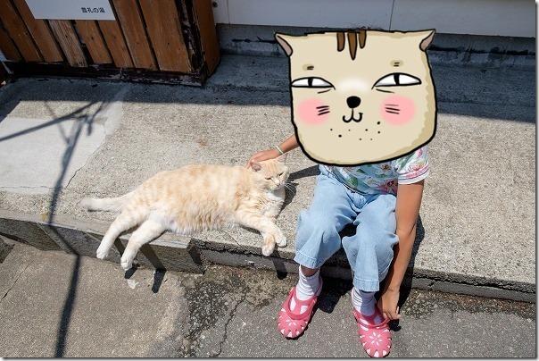 豊礼の湯(ほうれいのゆ)の猫
