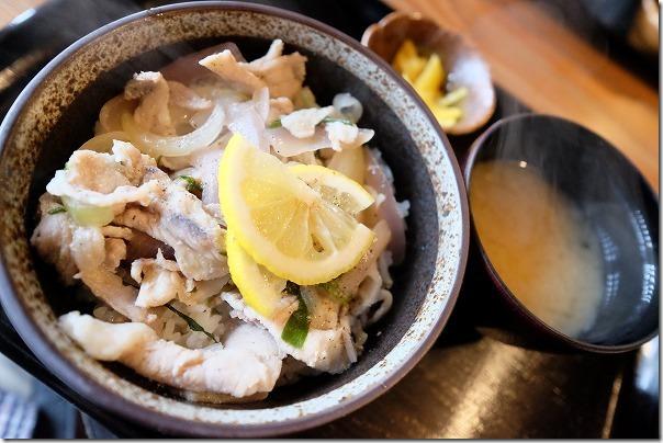 宮島じぱんぐの広島レモンのさっぱり丼