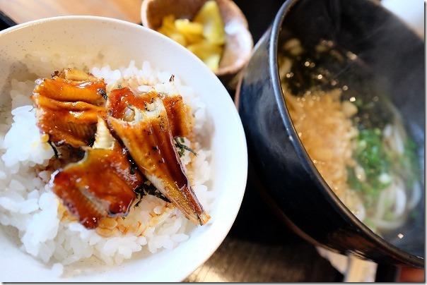 宮島じぱんぐのわかめうどんとミニ穴子丼セット