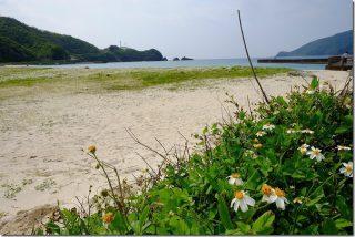 奄美大島 タエン浜海水浴場で水遊び
