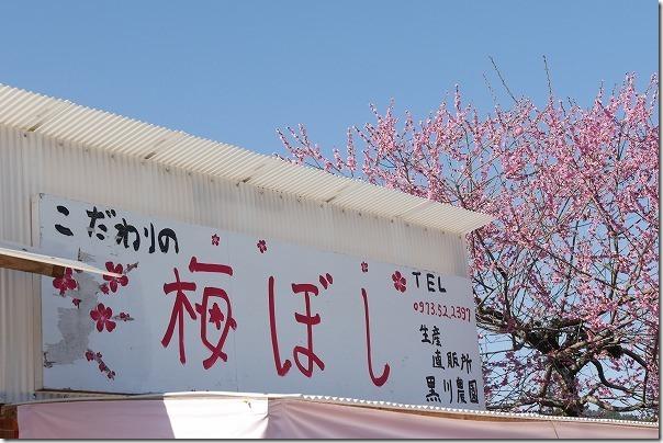 日田,おおくぼ台梅園にあった梅干し直売所