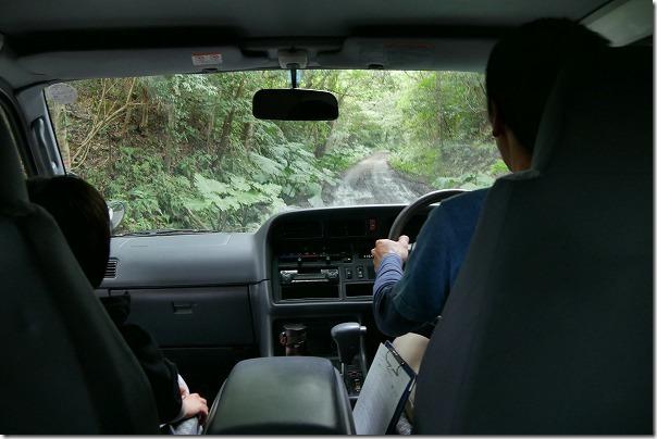 金作原原生林への道、悪路