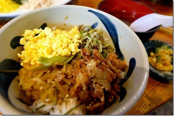 奄美大島「鳥しん」のパパイヤ丼