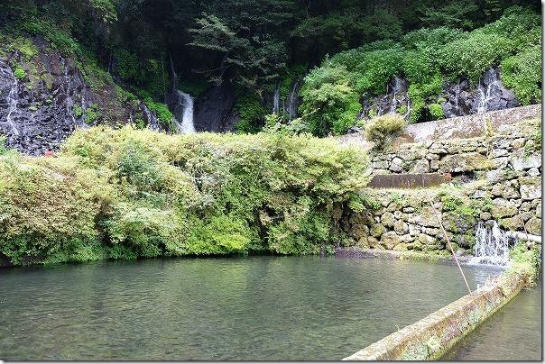 舟の口水源の釣り堀