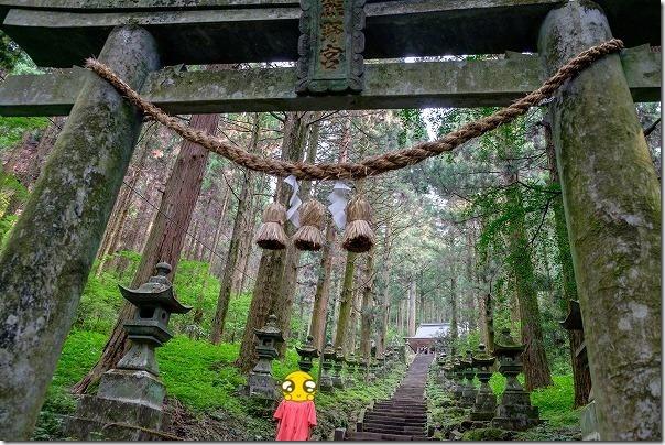 上色見熊野座神社の雰囲気ある苔むす石段