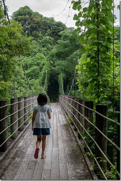 通潤橋近くにある五老ヶ滝(ごろうがたき)の吊橋