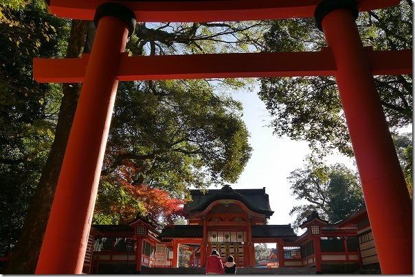 宇佐神宮を参拝、早朝、西大門